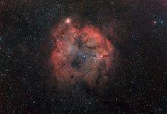 IC1396 and the Elephant Trunk Nebula