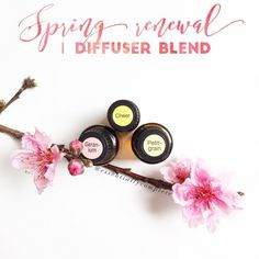 """Katie Reeves ✨ dōTERRA (@essentiallycomplete) on Instagram: """"With the first day of Spring just 6 days away, I have been LOVING this diffuser blend lately! It's…"""""""