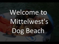 Julie Martinez is the owner of Mittelwest German Shepherds breeder.