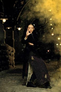 The Grandmasters by Wong Kar Wai 一代宗師 宫二