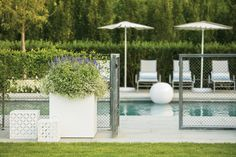 Metal garden trellis made from zinc galvanized wirework. Trellis panels for privacy and trellis fencing by Garden Requisites. Garden Trellis Panels, Metal Trellis, Trellis Fence, Pool Gates, Steel Mesh, Fencing, Bespoke, England, Strong