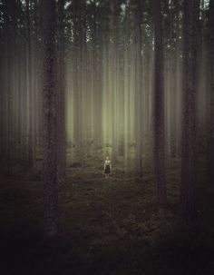 Alone in the forest. Something like this as a wall mural painted on tarp would be great. Either an eerie forest or downright creepy.