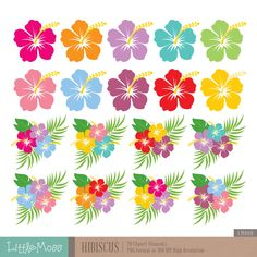 Hibiscus Digital Clipart Hawaiian Flower Clipart by LittleMossEtsy :: Your place to buy and sell all things handmade Hawaiian Birthday, Moana Birthday, Flamingo Birthday, Flamingo Party, Hawaiian Flowers, Hibiscus Flowers, Lilies Flowers, Cactus Flower, Flowers Garden