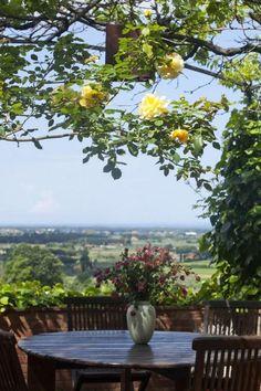 Toscane: uw vakantiegevoel begint al op het moment dat u via de oprijlaan richting de vrijstaande viilla, vakantiehuis rijdt. Omgeven door bomen en planten ziet u de villa in de verte liggen. Geniet hier van de rust, het zwembad en de zee die vlakbij is. Deze prachtige sfeervolle villa heeft alles.