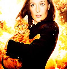 I LOVE Gillian Anderson! ... Brought to you in part by StoneArtUSA.com ~ affordable custom pet memorials since 2001