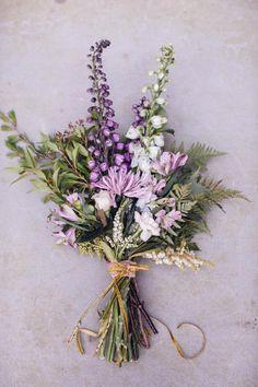 lavender //