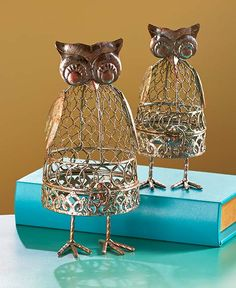 Sets of 2 Owl Curiosity Cages | LTD Commodities