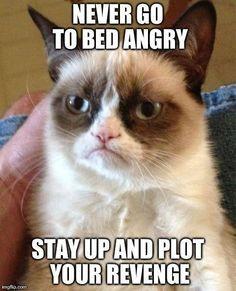 Grumpy Cat plots revenge