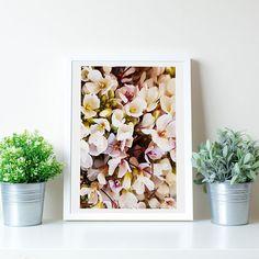 Arte moderna nature inspirational wall art flowers poster