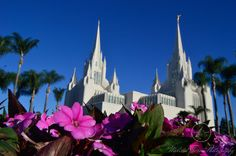 Different point of view of Mormon Church in San Diego California. Oct 2017 Flowers. Purple. Blue Sky