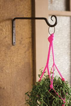Add some character to your hanging plants with his hand forged iron plant hook. The hook extends 12 inches out, and the base is 6 inches tall. Perfect for your patio or porch, and pretty enough to use inside! Plant Hooks, Plant Hanger, Diy Hanging, Hanging Planters, Cast Iron Plant, City Farm, Shops, Metal Crafts, Wall Hooks