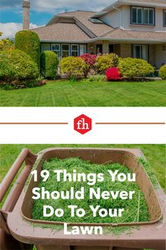 Whether you're a green thumb or not, it's easy to maintain a barefoot-worthy lawn with these tips. Outdoor Landscaping, Outdoor Decor, Types Of Grass, Weed Seeds, Sandy Soil, Grass Seed, Buying A New Home, Backyard, Patio