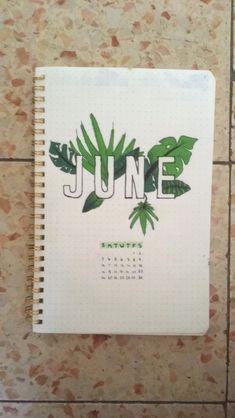 Bullet journal June