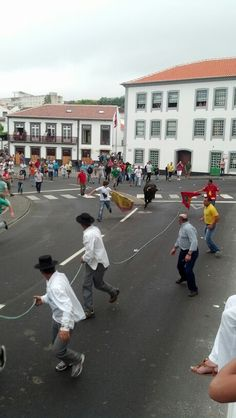 Street bullfights were crazy to watch. Terceira, Azores, Portugal