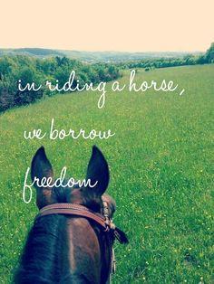 In riding a horse, we borrow freedom.   SSSOOO true!!