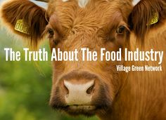 The Truth About The Food Industry /http://villagegreennetwork.com/truth-food-industry/