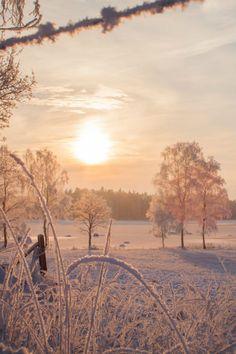 Frozen Sunset by Marleen Saarloos