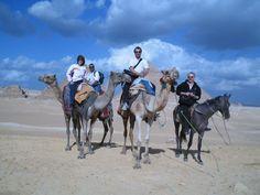 Dina Preston Band in Cairo