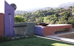 Bold Backdrops for Colorful Gardens - Houzz.com