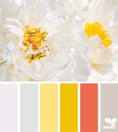 flora tones - clean and bright