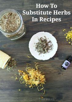 How To Substitute Herbs In Recipes | GrowingUpHerbal.com | Missing an herb in a remedy? Here's how to substitute one herb for another.