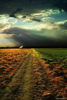 *** fotografie d'ispirazione: paesaggi e scenari ***