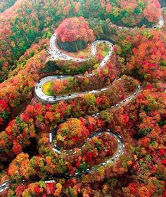 in World's Best Places to Visit. in World's Best Places to Visit. in World's Best Places to Visit. Fall Pictures, Nature Pictures, Beautiful Places To Visit, Beautiful World, Image Nature, Autumn Scenes, Autumn Aesthetic, Autumn Photography, Film Photography