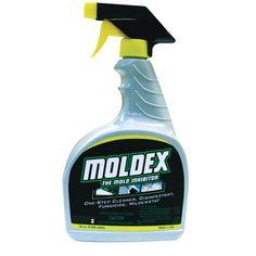 12 Best Mold And Mildew Images Mold Mildew Mildew