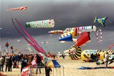 A kite beach day