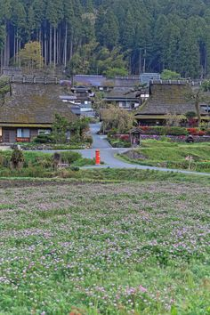 Scenery of the old village of Miyama-cho, Kyoto, Japan 美山町