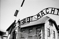 Work Brings Freedom - Hell no dude.     Auschwitz gate - Holocaust Memorial Day    http://dailypinner.eraniapinnera.com/giorno-della-memoria-per-non-dimenticare-fabbriche-della-morte-holocaust-memorial-day-not-forgetting-factory-of-death/