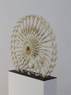 3D printed 'The Wheel of Life'