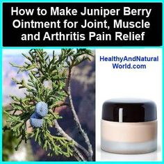 Juniper Berry Ointment for Joint, muscle and Arthritis Pain Relief - Healthy and Natural World