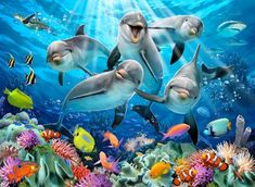 Trademark Global Howard Robinson 'Five Happy Dolphins' Canvas Art - 47 x 35 x 2 Puzzles, Puzzle Ravensburger, Images D'art, Facebook Cover Images, Underwater Art, Ocean Creatures, Tier Fotos, Diamond Art, Fantastic Art