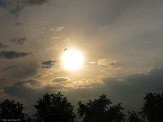 Coucher de soleil_Carmaux (France)_2014-08-18 © Hélène Ricaud-Droisy (HRD)