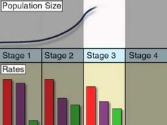 Stages of Population Growth [Animation] (+playlist)