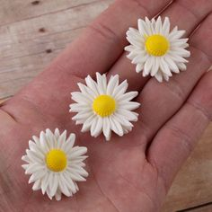 White Petite Daisy Gumpaste Sugarflower cake decorations are perfect as cake toppers on fondant cakes & cupcakes. | CaljavaOnline.com #caljava #sugarflower #gumpaste #daisy #caketopper #cakedecoration