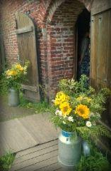 Kauniit kukat Ruutikellarin ovella Plants, Plant, Planets