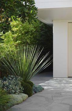 Modern landscaping inspo... — DOT + POP #ModernLandscaping