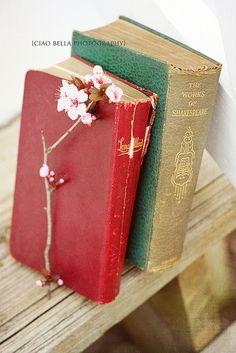 books.quenalbertini: Old books