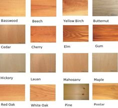 These are various samples of other types of wood