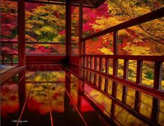 息を呑む絶景が広がる。京都・瑠璃光院の紅葉は11月30日までだけの超限定2015