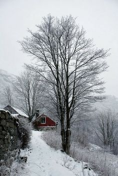Red House in Winter I Love Winter, Winter Snow, Winter White, Winter Christmas, Beautiful World, Beautiful Places, Purple Home, Winter Scenery, Snow Scenes