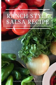 This ranch style salsa recipe is perfect for brand new beginners because it cooks up quickly, is giftable, is delicious, and is relatively fast. Read on for the recipe! Canning Homemade Salsa, Easy Canning, Canning Salsa, Canning Tomatoes, Salsa For Beginners, Water Bath Canning, Fresh Tomato Salsa, Salsa Recipe, Ranch Style