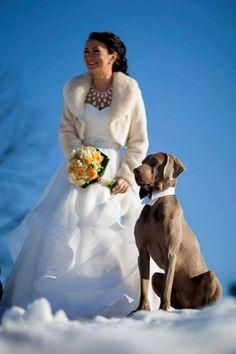 Bride and Weim.