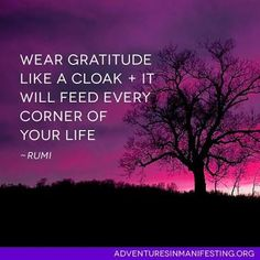 Wear gratitude like a cloak.  It will feed every corner of your life. | Rumi