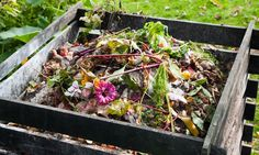 Good Turn Earth Company will launch a crowdfunding campaign to create a living soil conditioner.