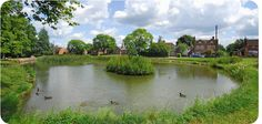 High Wycombe, Estate Agents, Professional Services, First Class, Golf Courses, River, Street, Places, Outdoor