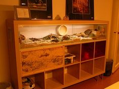 Beautiful DIY cage for small pet rodents e.g. Gerbils who loves to dig! Made from Ikea Expedit bookshelf.