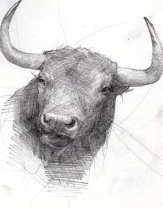 Toro- Grafito- Juan Ruiz
